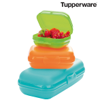 Tupperware Maxi-Twin-Set